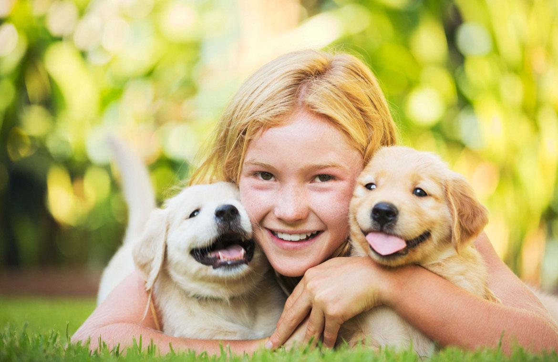 ¿Qué tipo de mascota puede tener un niño? | Jolly Ecuador