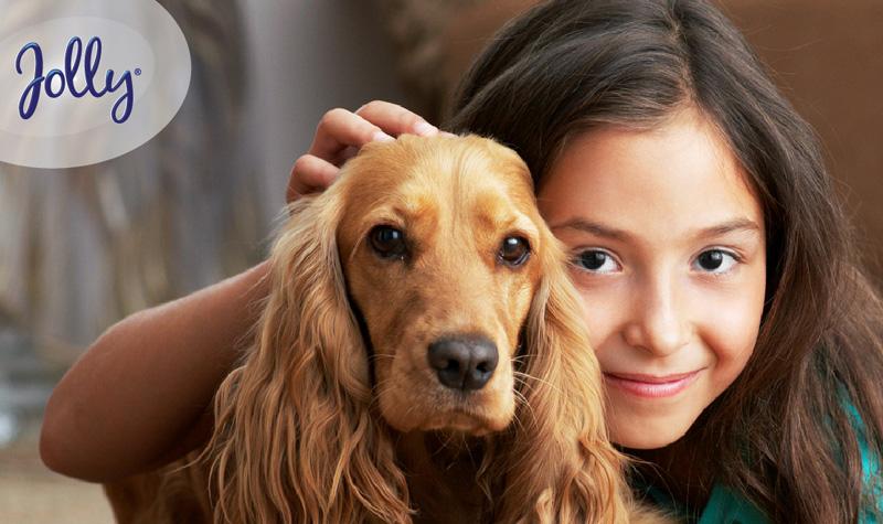 Que debo considerar antes de traer un perro a mi hogar